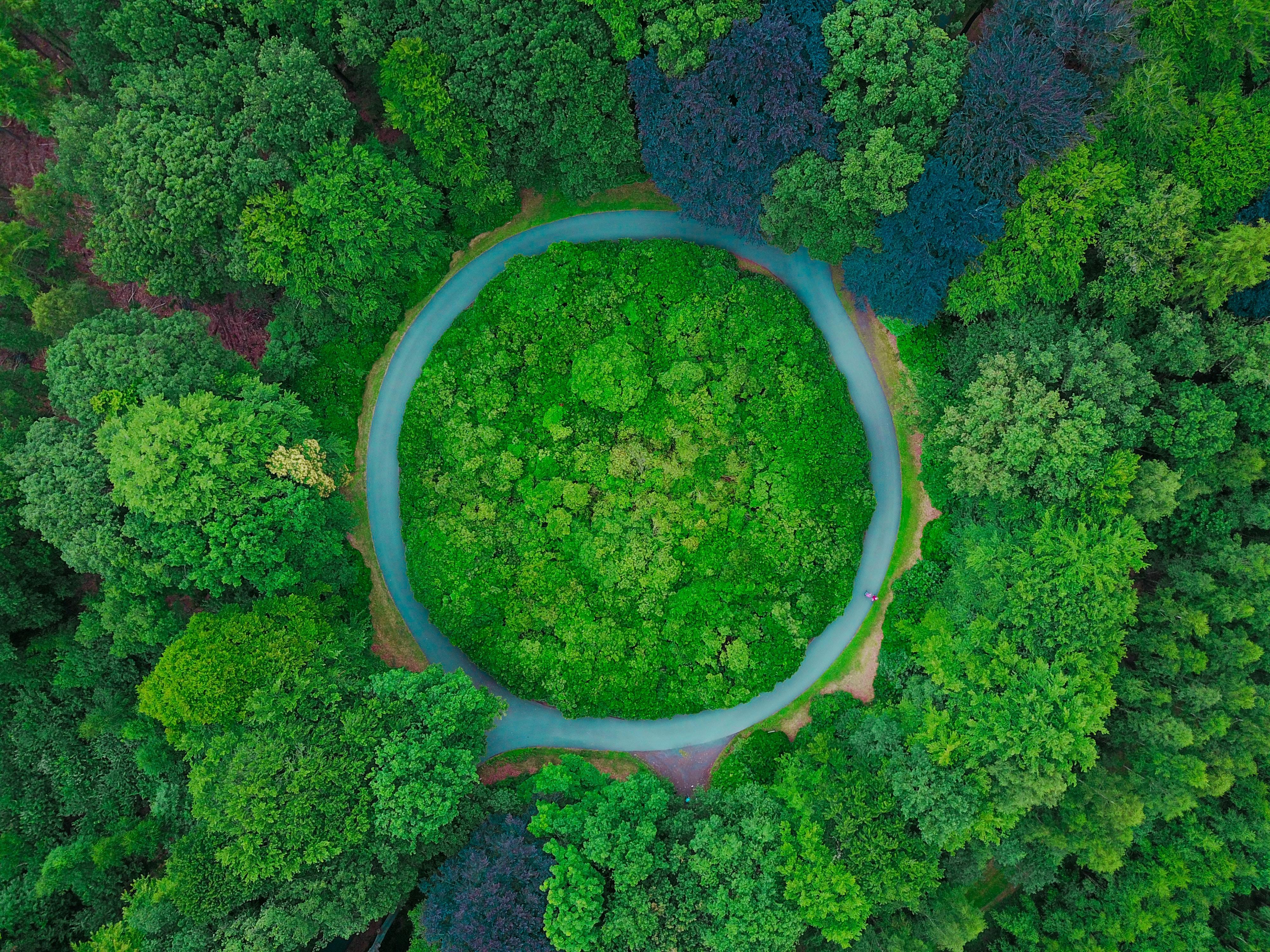 ni-products-circular-economy-recycquebec-creditsThomasLambert